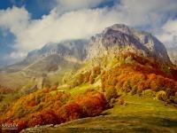 Atumn landscape