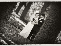 Сватбена фотосесия в парка