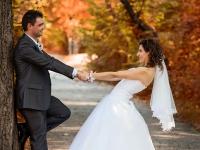 Сватбена приказка