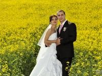 Сватбена фотосесия в жълто