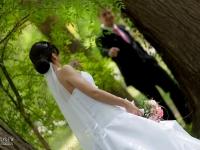 Сватбена фотосесия в гората
