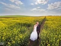 Сватбена фотосесия в полето